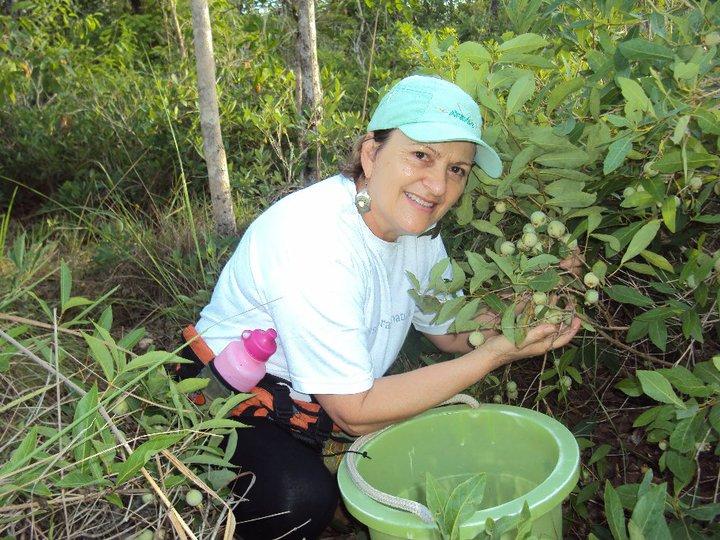 Primavera em Bonito: manifestações da natureza na estação mais inspiradora do ano