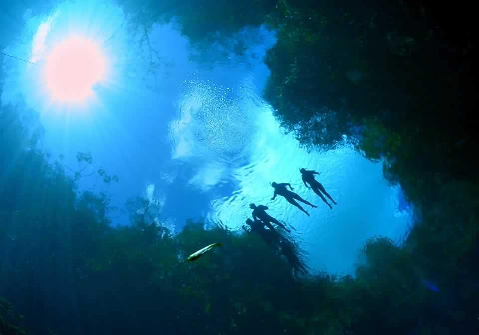 4 lugares com água cristalina para visitar em Bonito (MS)